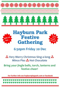 Hayburn Park Festive Gathering 2013